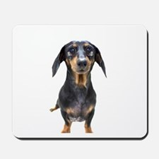 Crying Doxie Mousepad