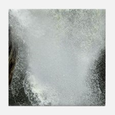 Mighty Waterfall Tile Coaster
