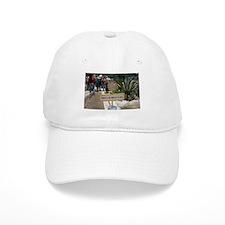Equator Baseball Cap