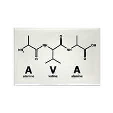 Ava Peptide Rectangle Magnet