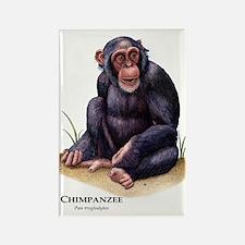 Chimpanzee Rectangle Magnet