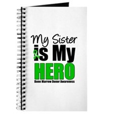 My Sister is My Hero BMT Journal
