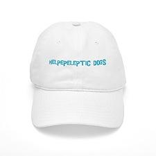 Helpepeleptic Dogs Baseball Cap