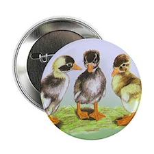 """Runner Duck Ducklings 2.25"""" Button (10 pack)"""