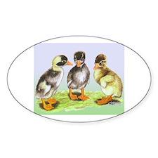 Runner Duck Ducklings Oval Decal