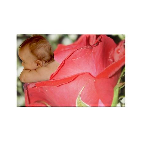 Rose Flower Baby Rectangle Magnet