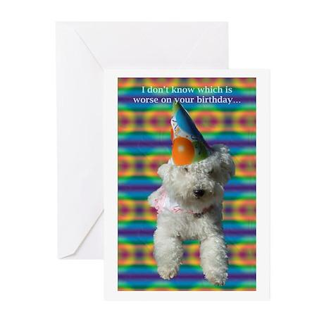 Bischon Birthday Cards (Pk of 10)