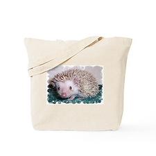 Caldecott Tote Bag