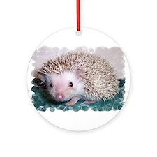 Caldecott Ornament (Round)