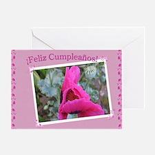 Spanish Birthday Card / Feliz Cumleanos(1)