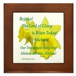 Daffodils, Rejoice Framed Tile
