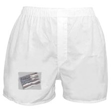Old Glory Boxer Shorts
