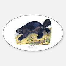 Audubon Wolverine Animal Oval Sticker (10 pk)