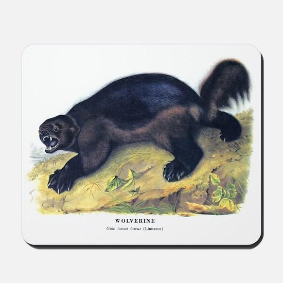 Audubon Wolverine Animal Mousepad