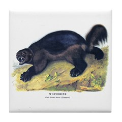 Audubon Wolverine Animal Tile Coaster