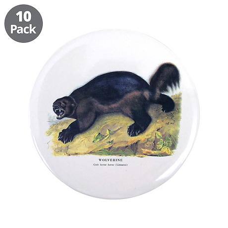 "Audubon Wolverine Animal 3.5"" Button (10 pack)"