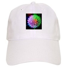 Unique Dandelion plant Baseball Cap