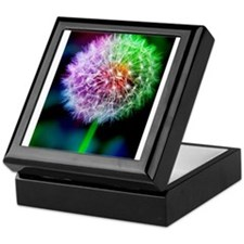 Unique Dandelion Keepsake Box