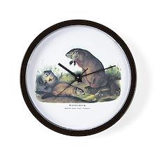 Audubon Woodchuck Groundhog Wall Clock