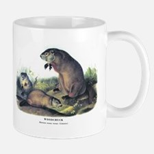 Audubon Woodchuck Groundhog Mug