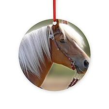 Haflinger Head Ornament (Round)