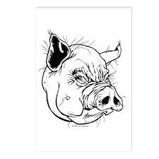 Hog Postcards (Package of 8)