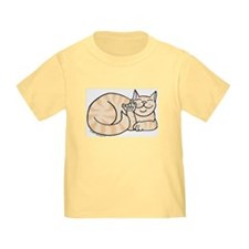 Orange Tabby ASL Kitty T