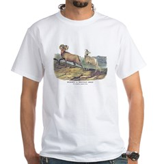 Audubon Bighorn Sheep Shirt