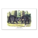 Audubon Black Bear Animal Rectangle Sticker