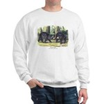 Audubon Black Bear Animal Sweatshirt