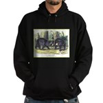 Audubon Black Bear Animal (Front) Hoodie (dark)