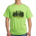 Audubon Black Bear Animal Green T-Shirt