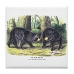 Audubon Black Bear Animal Tile Coaster