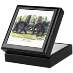 Audubon Black Bear Animal Keepsake Box