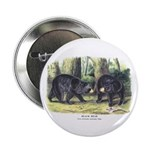 Audubon Black Bear Animal 2.25