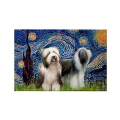 Starry / 2 Bearded Collies Rectangle Magnet (10 pa
