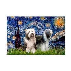 Starry / 2 Bearded Collies Posters