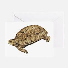 Desert Tortoise Greeting Cards (Pk of 10)