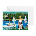 Sailboats / Beardie #1 Greeting Card
