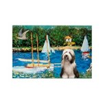 Sailboats / Beardie #1 Rectangle Magnet