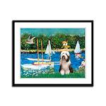 Sailboats / Beardie #1 Framed Panel Print