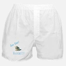 save knut Boxer Shorts