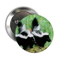 """Two Skunks 2.25"""" Button (10 pack)"""