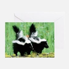Two Skunks Greeting Card