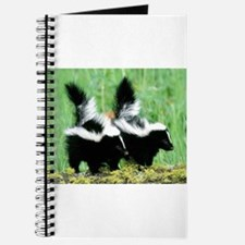Two Skunks Journal