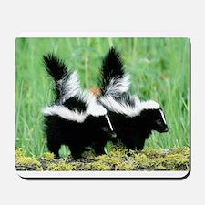 Two Skunks Mousepad