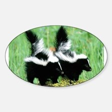 Two Skunks Oval Decal