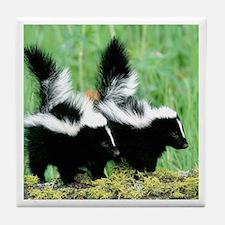 Two Skunks Tile Coaster