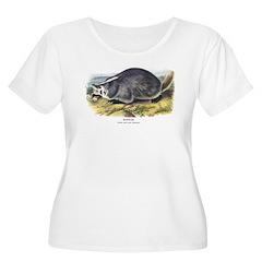 Audubon Badger Animal (Front) T-Shirt