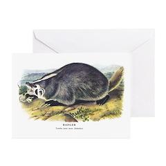 Audubon Badger Animal Greeting Cards (Pk of 20)